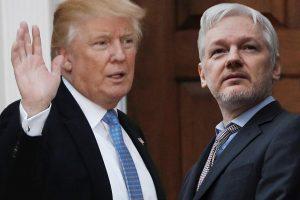 Assange Trump